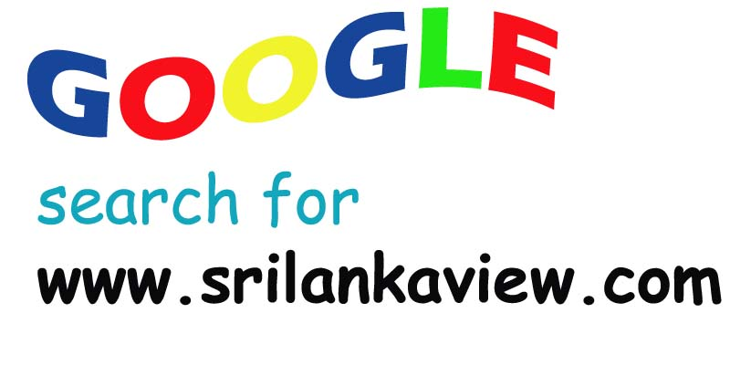 Google search for www.srilankaview.com