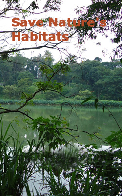 Save the Nature Logo Collection and Quotes- SriLankaView