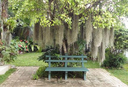 Home garden landscaping sri lanka srilankaview for Garden design ideas sri lanka