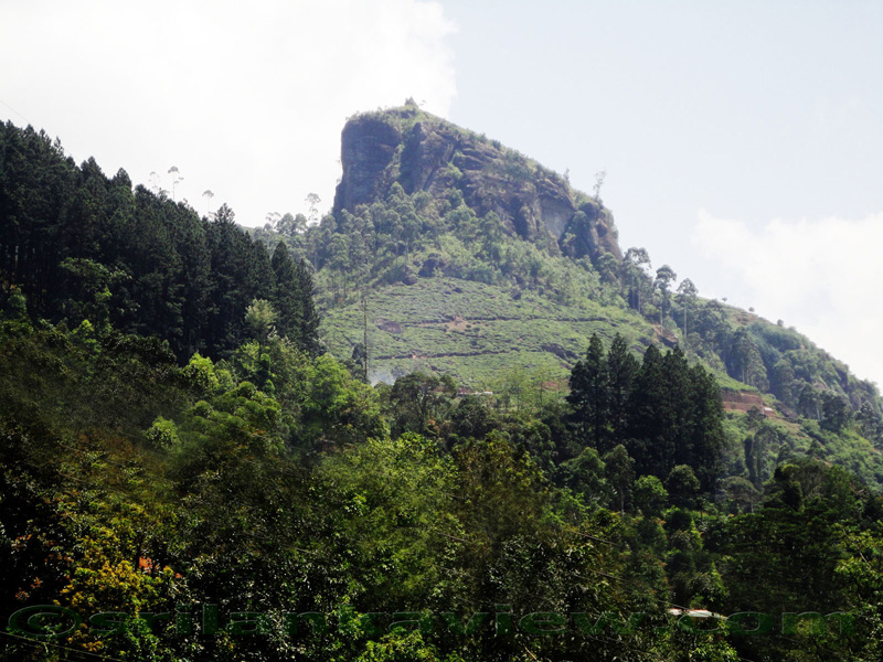 Nuwara Eliya Geography and Topography